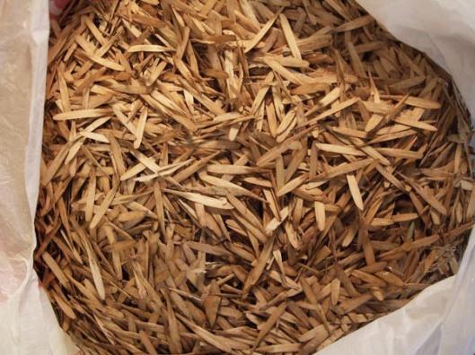 alice-frenz-2012-White-Ash-seeds-x600b