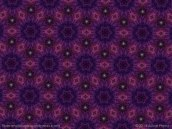 alice-frenz-furry-flowers-in-plum-pattern-2014