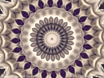 alice-frenz-purple-and-ivory-mandala-2014-11-04