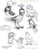 illustration-sketchbook-alice-frenz-ink-2014-11-29-001