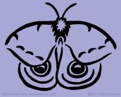 appalachian-spirit-animals-io-moth-alice-frenz-pattern-design-450x360